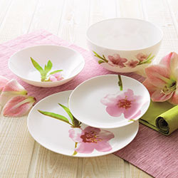 Столовый сервиз DIWALI WATER COLOR  19 предметов